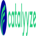 Catalyyze executive / life coaching & career counselling Mumbai